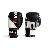 SMAI Element Boxing Gloves V2