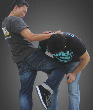 krav maga adult training