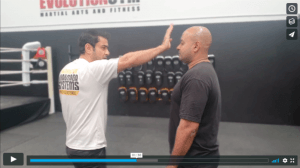 Straight Punch & Palm Strike