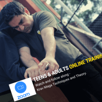 Online Training For Teens & Adults