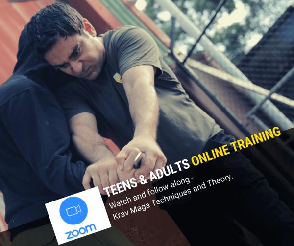 Teens & Adults Krav Maga Training Online