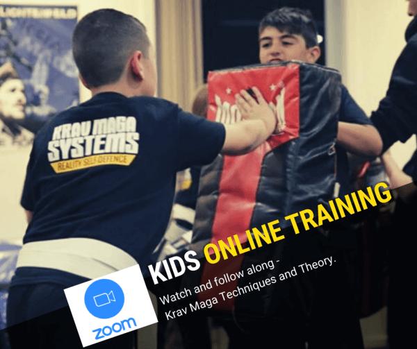 Kids Online Krav Maga Training